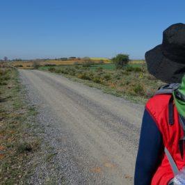 Dal cammino di Santiago alla prima guida turistica